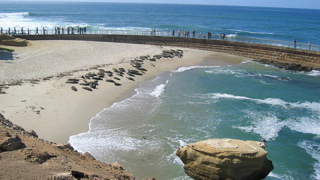 800px-LaJolla_childrenspool-640x360